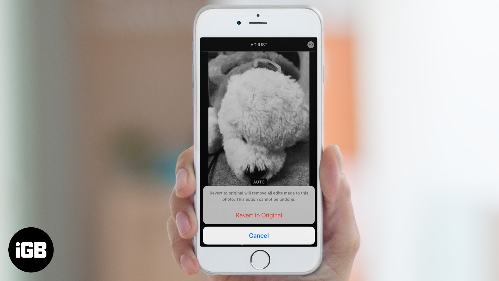 How to Remove Filters and Effects from Photos on iPhone or iPad
